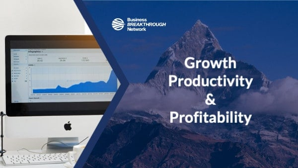 The Three Metrics of Business Success - Growth, Profitability, Productivity